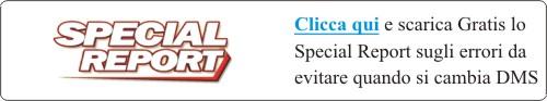 dealerblog - specialreport